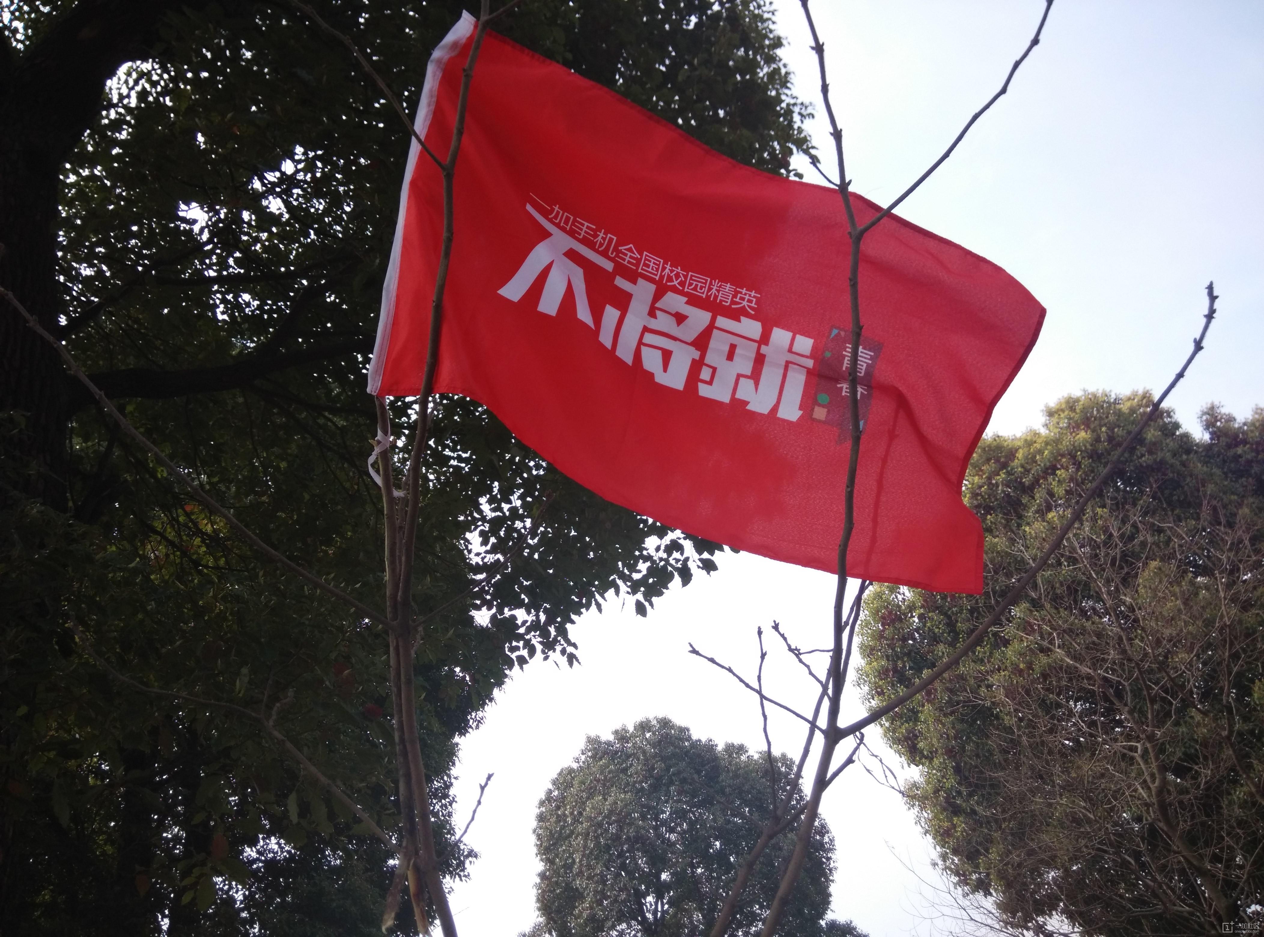 迎风飘扬的旗帜
