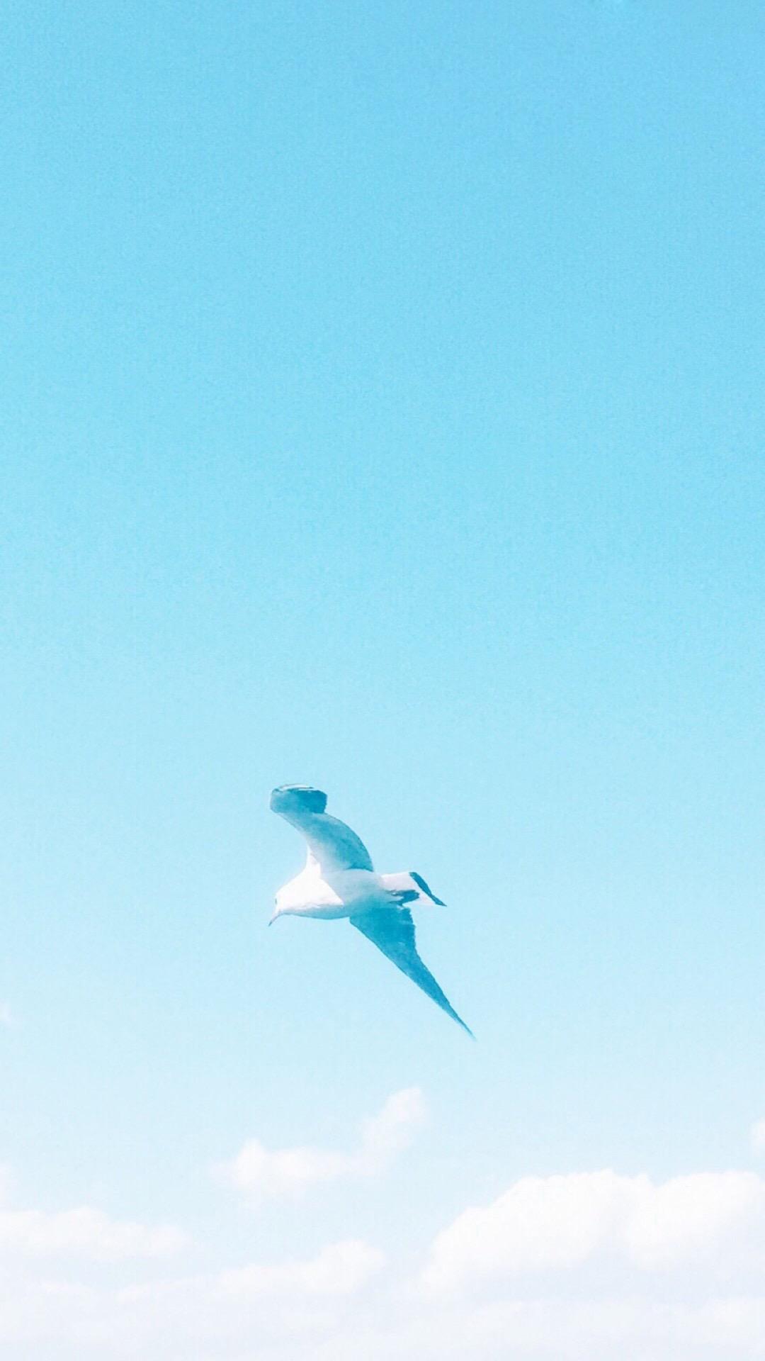 夏日海岛风情唯美风景图片手机壁纸