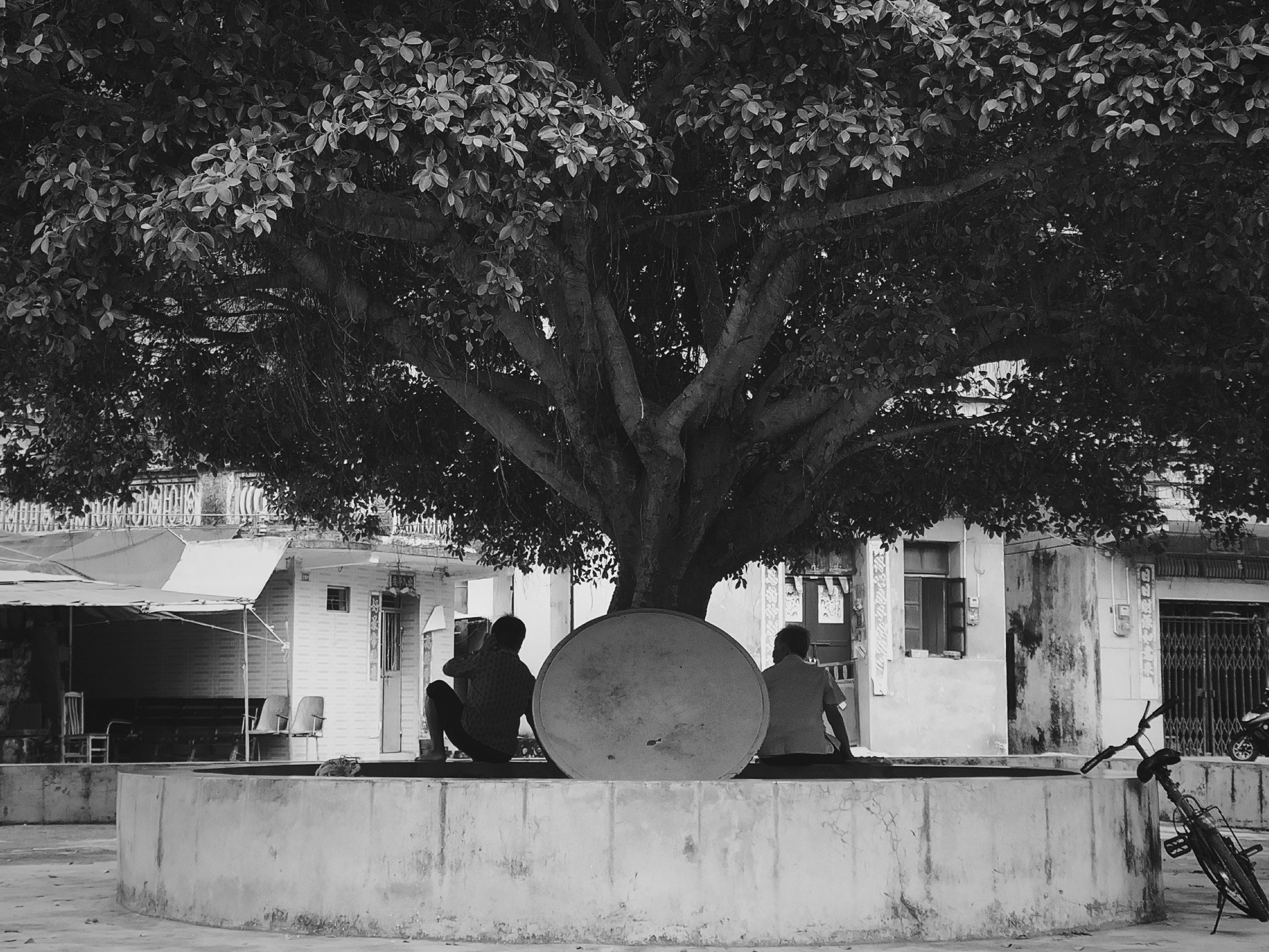 树下乘凉老人