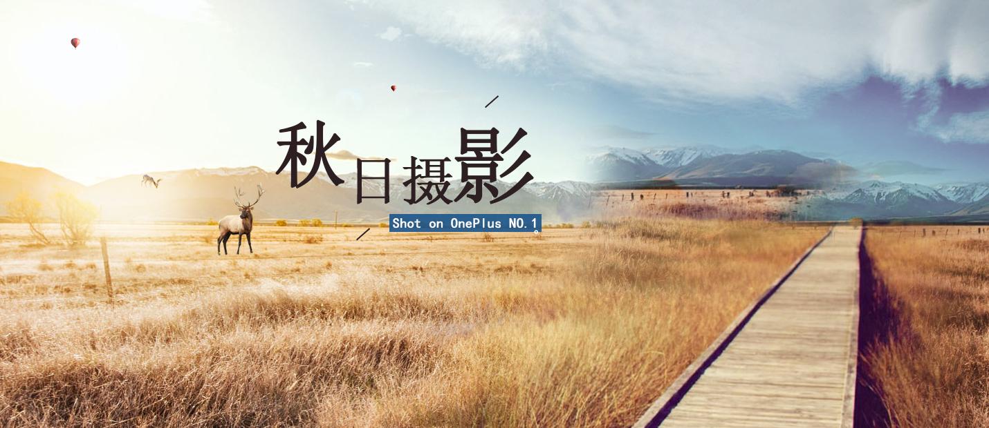 秋日摄影1.jpg