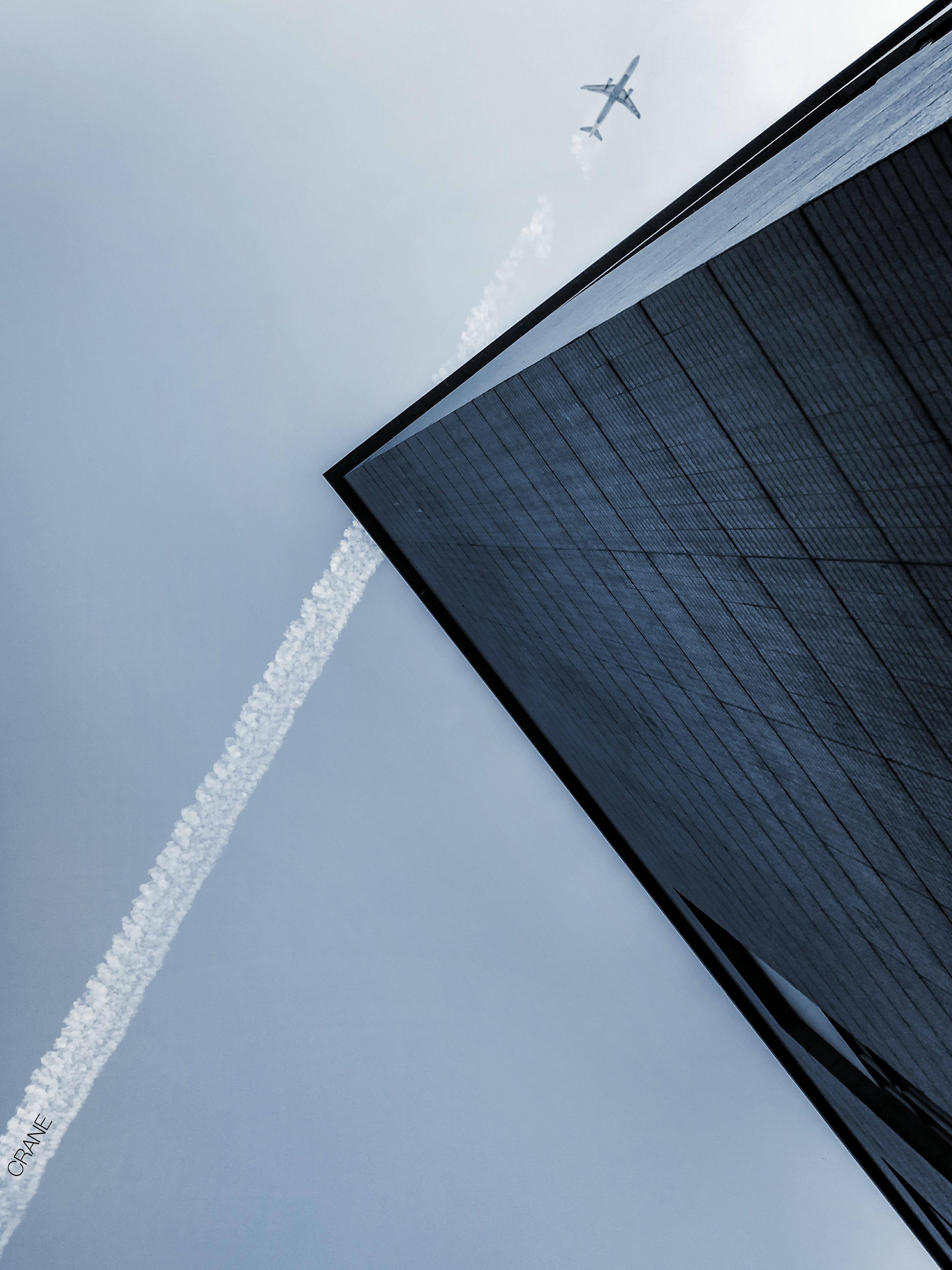Crane97.jpg