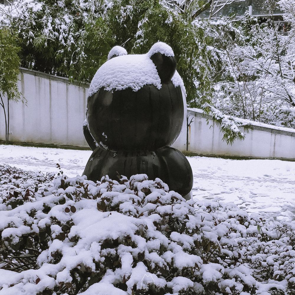 杭城大雪-002.jpg