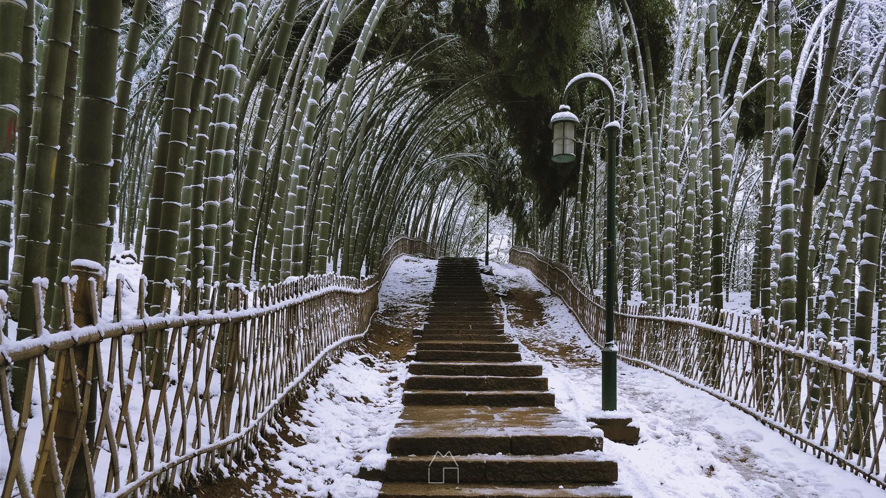 杭城大雪-016.jpg