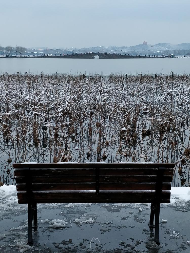 杭城大雪-021.jpg