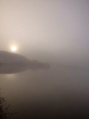 雾锁晨阳风不动,心绪万屡醉迷茫
