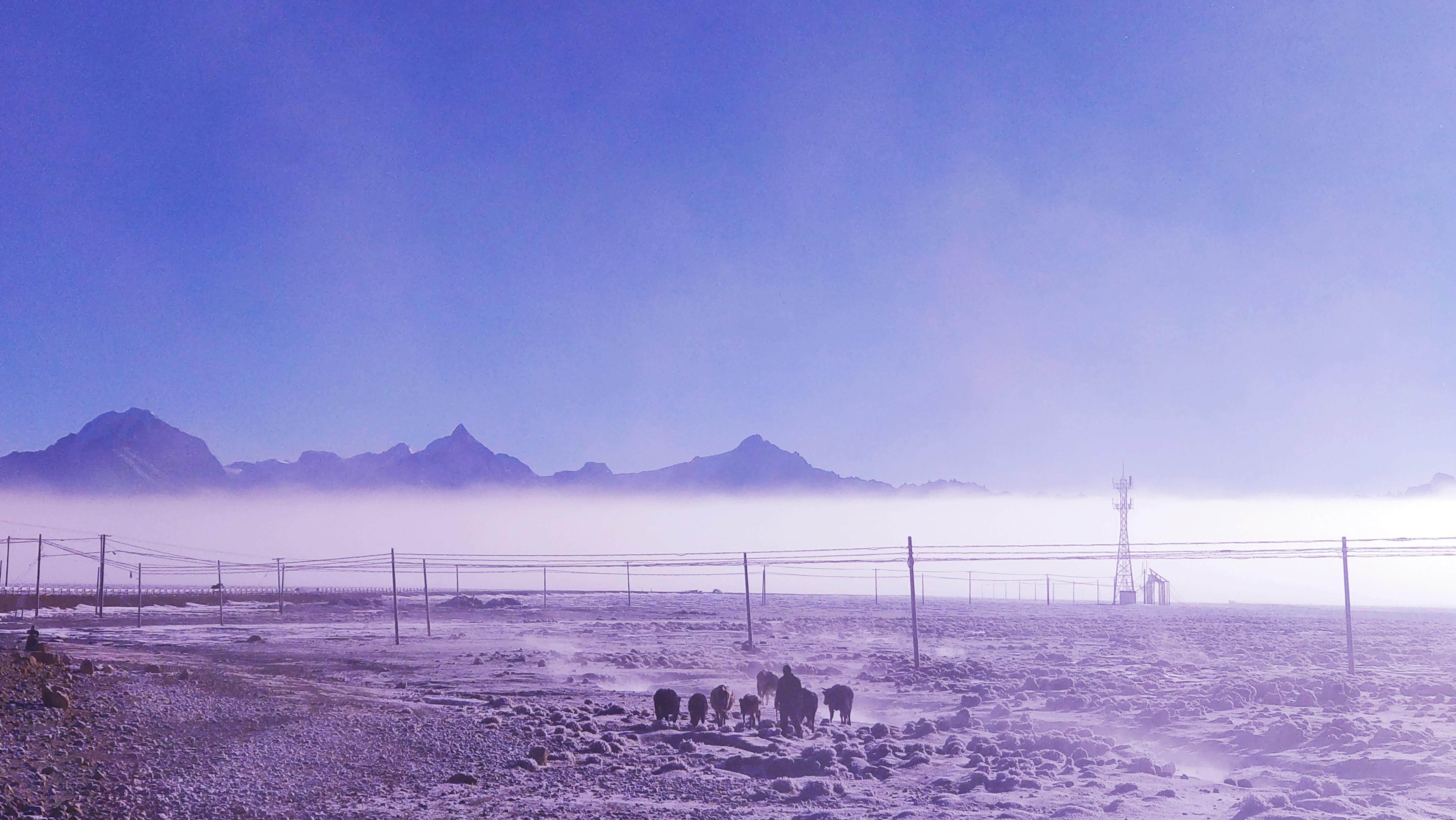 雪景20.jpg