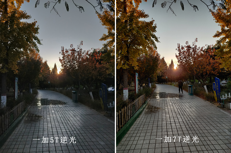 逆光对比.jpg