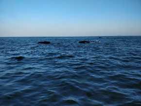 傍晚的大海
