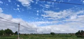 山东台风过境   之后
