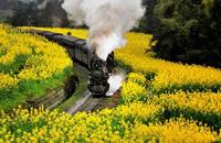 乘火车走遍最美中国