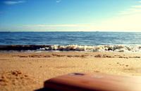 带一加去看海
