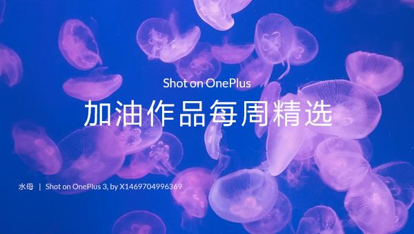 Shot on OnePlus · 第16周社区加油作品精选