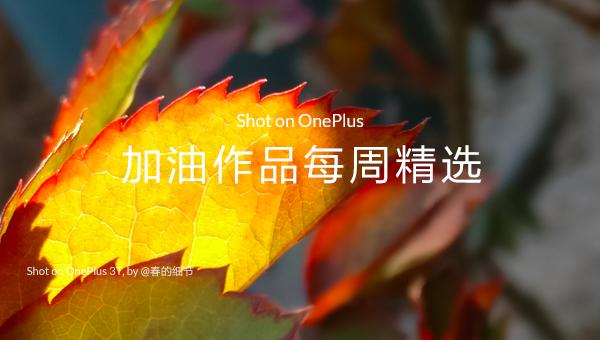 Shot on OnePlus · 第 25 周社区加油作品精选