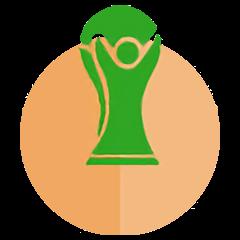 2014世界杯 纪念勋章