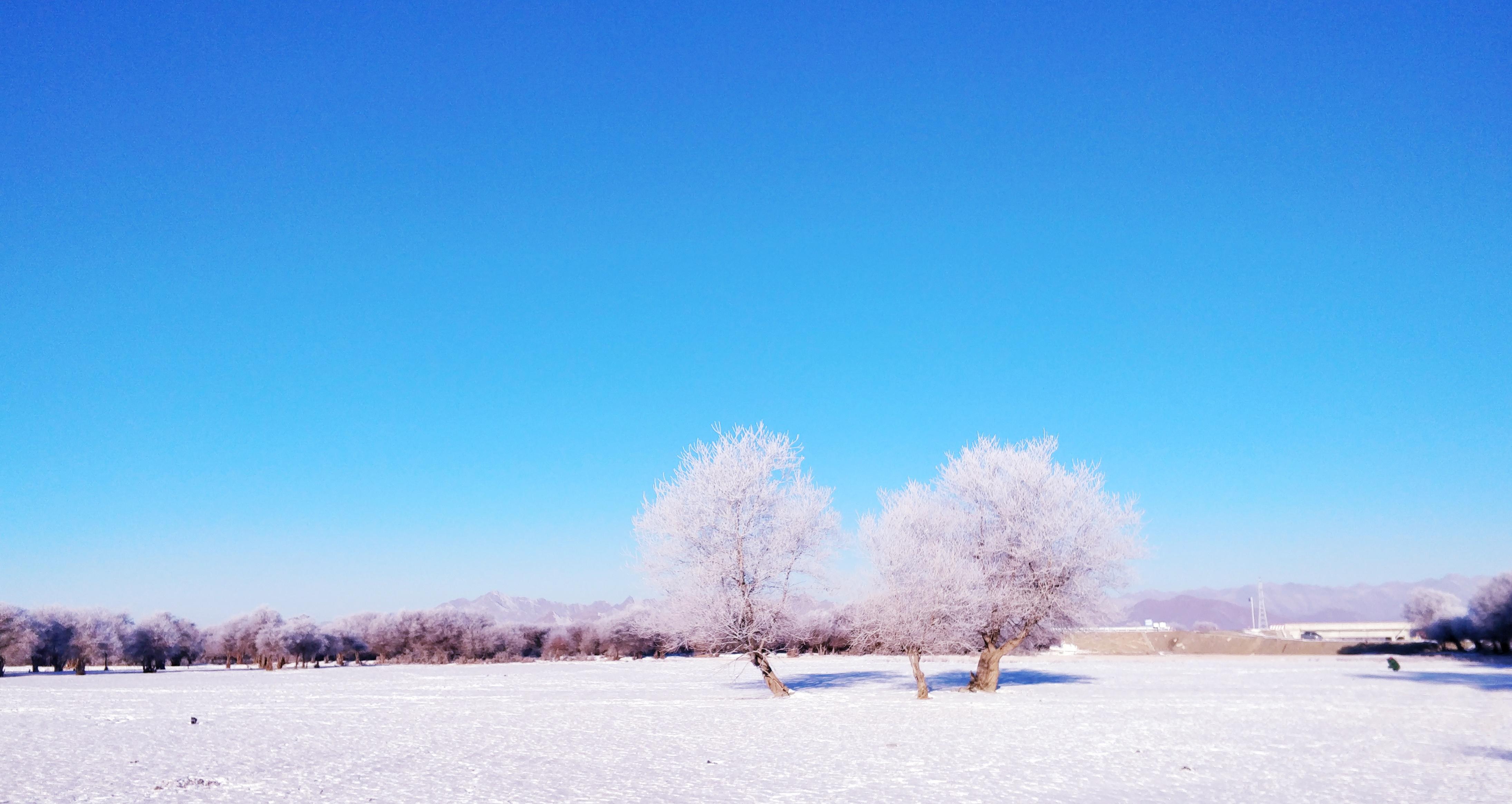雪景36.jpg