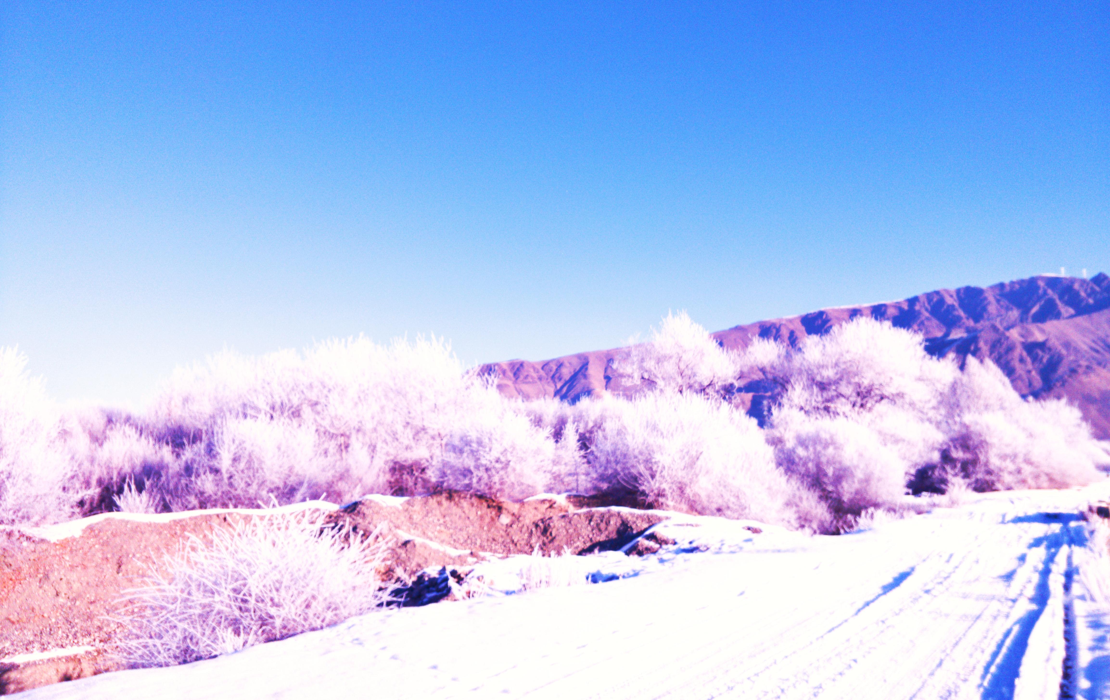 雪景45.jpg