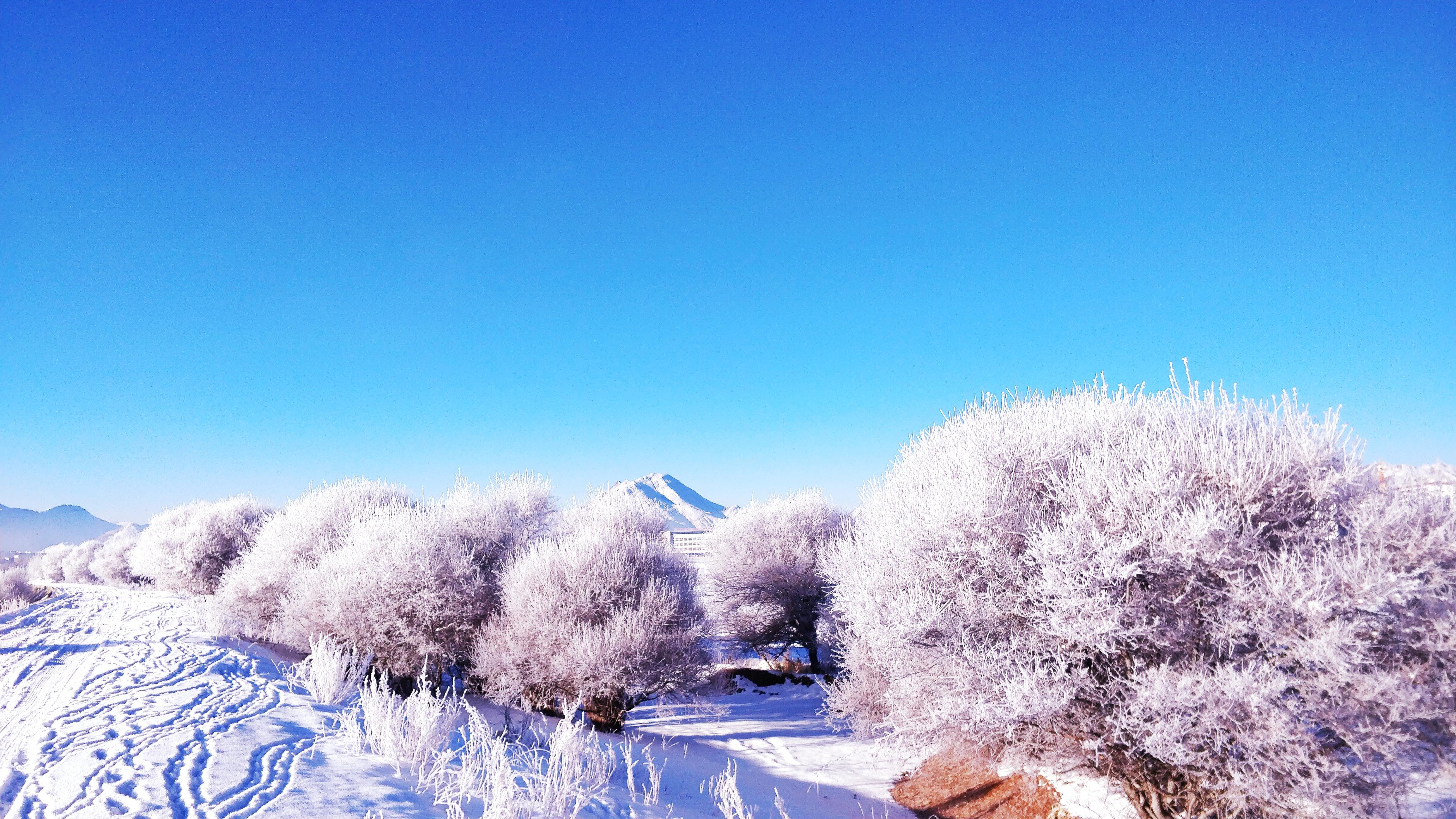 雪景46.jpg