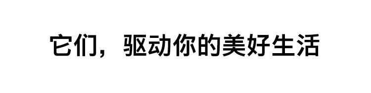 正文_03.jpg