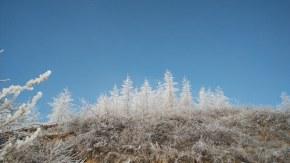 故鄉雪景圖2