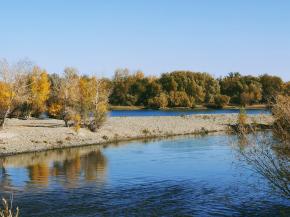 【鏡中秋日】以水為鏡,倒影北疆最美秋色