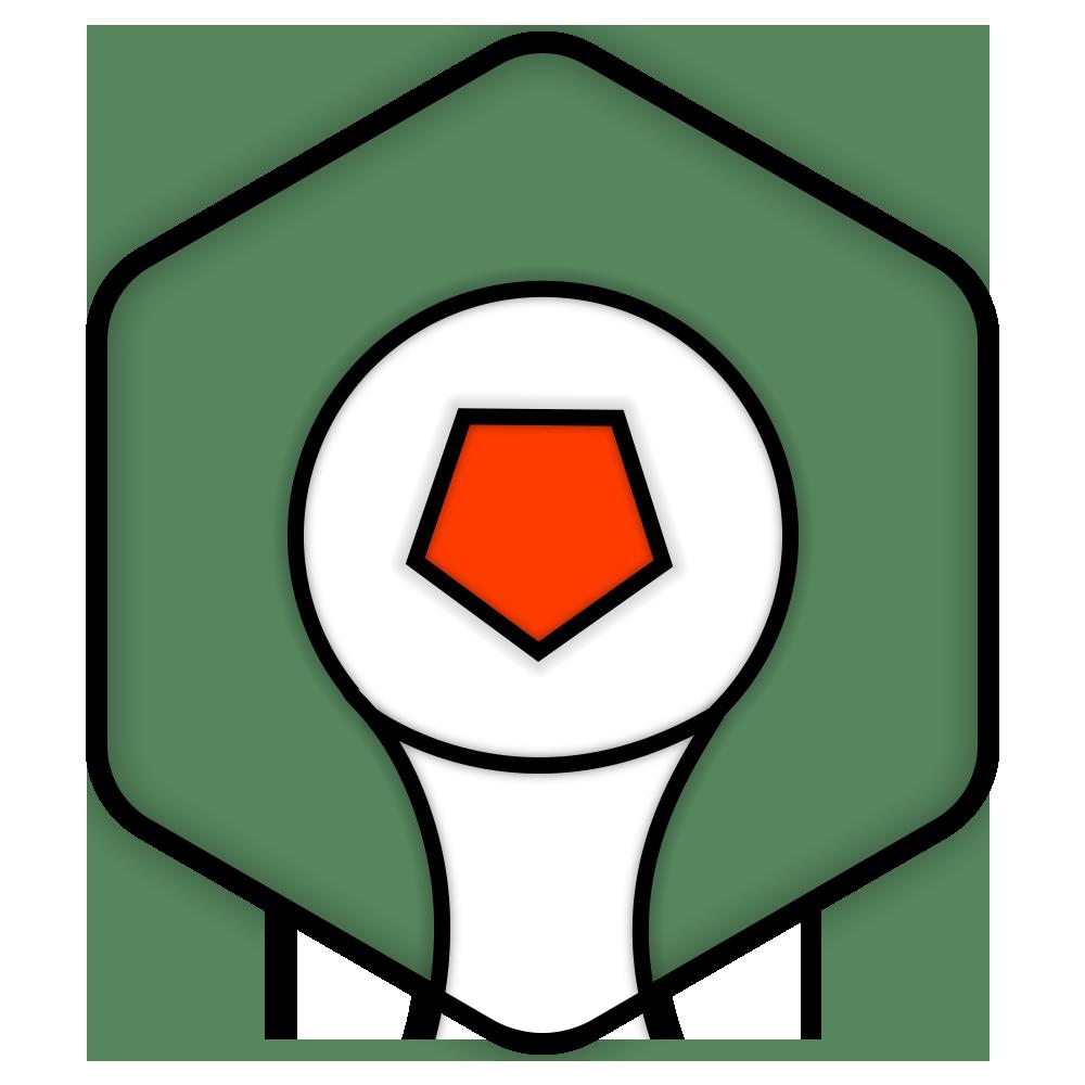 2014世界杯 紀念勛章
